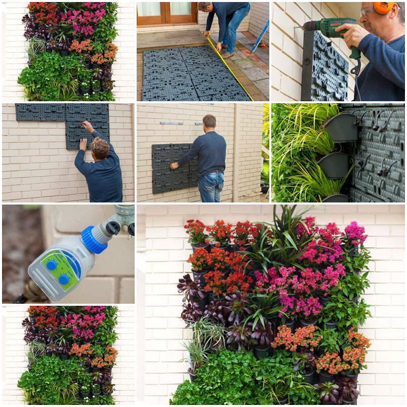 Vertical Garden on the Wall