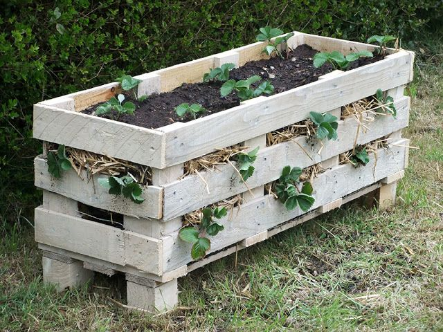 25 Amazing DIY Projects to Repurpose Pallets into Garden Planters --> Strawberry Pallet Planter