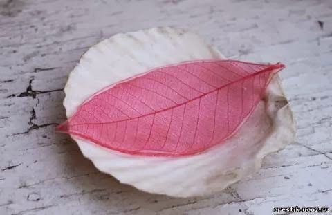 Diy colorful skeleton leaves 9