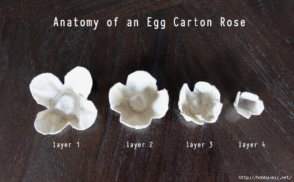 How to make pretty flower mirror decoration from egg Egg carton flowers ideas
