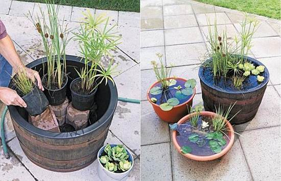 How to DIY Mini Garden Pond in a Container 3