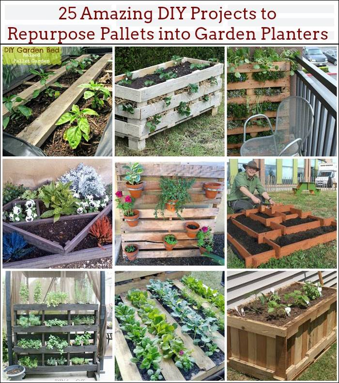 Pallet Veggie Garden: 25 Amazing DIY Projects To Repurpose Pallets Into Garden