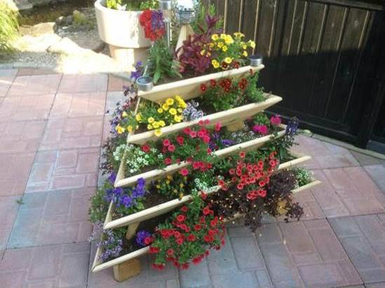 Creative Idea of Home Gardening - Triolife Plant Pyramid