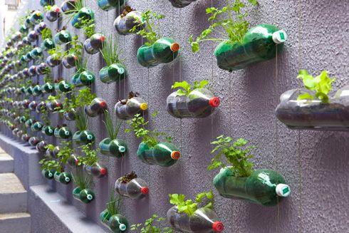 20+ Creative DIY Vertical Gardens For Your Home --> Build a Vertical Garden From Recycled Soda Bottles