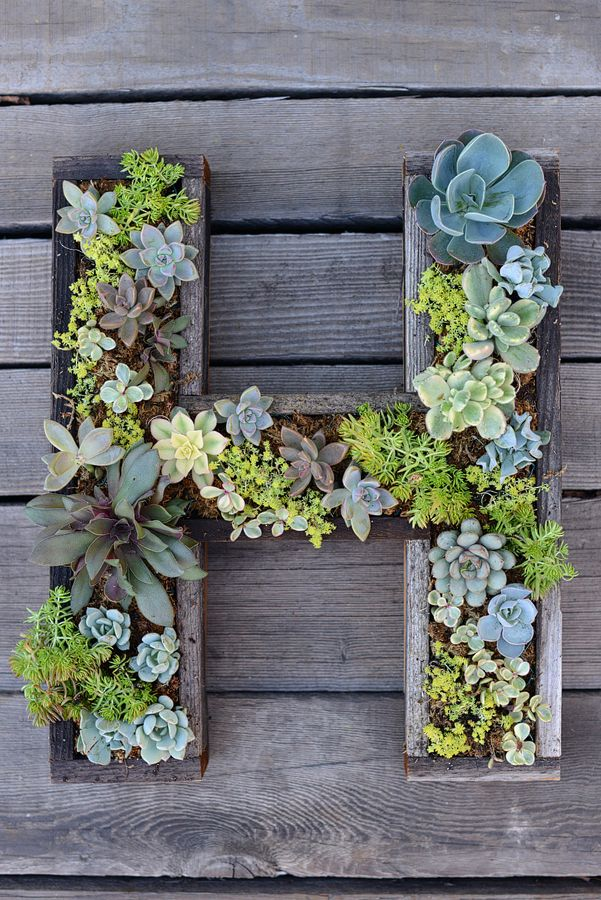 20 creative diy vertical gardens for your home gt diy wall mounted