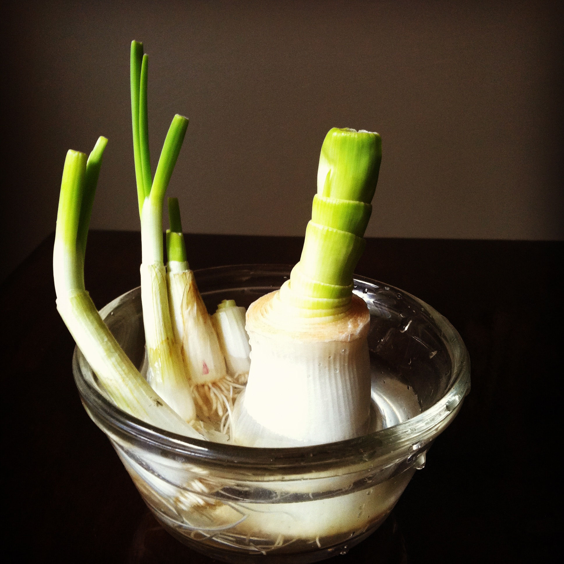 13 Vegetables That You Can Regrow Again And Again --> Leeks