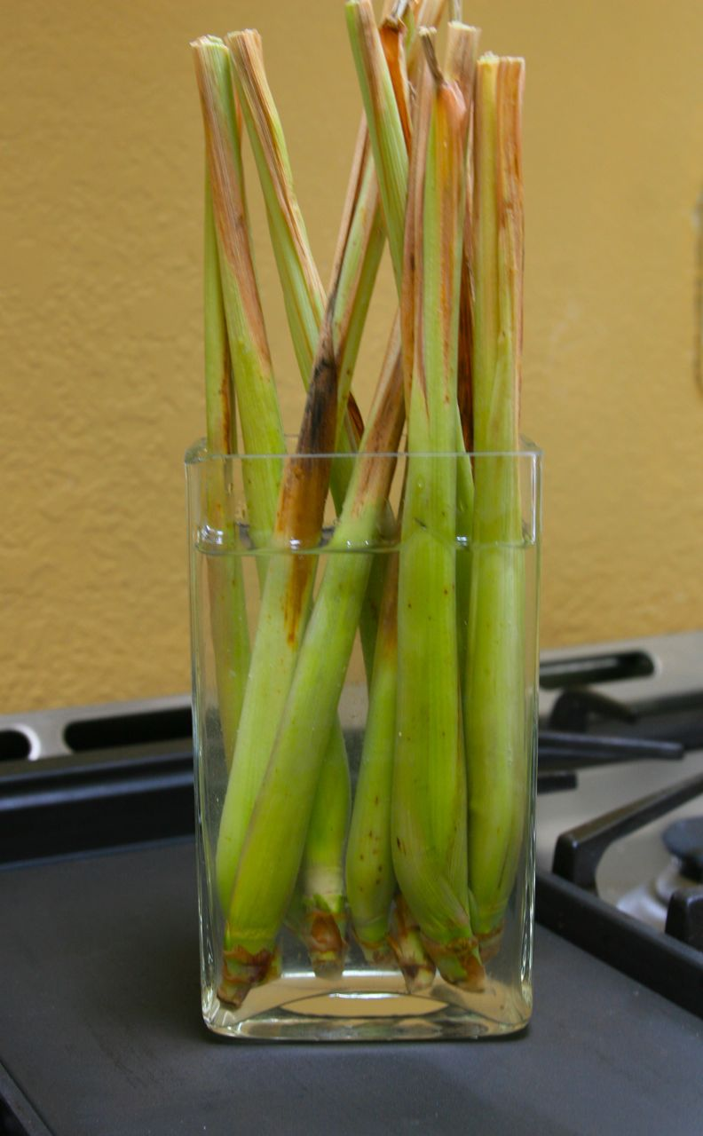 13 Vegetables That You Can Regrow Again And Again --> Lemongrass