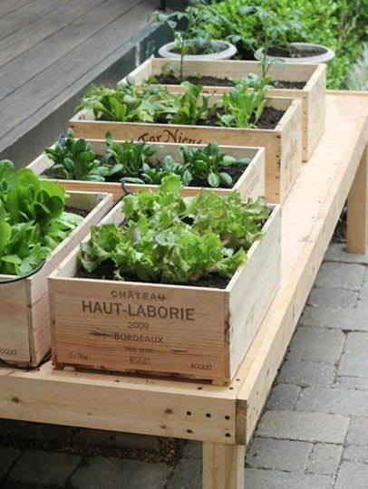 30+ Creative DIY Raised Garden Bed Ideas And Projects --> Turn Wine Box into Balcony-Sized Raised Bed Garden