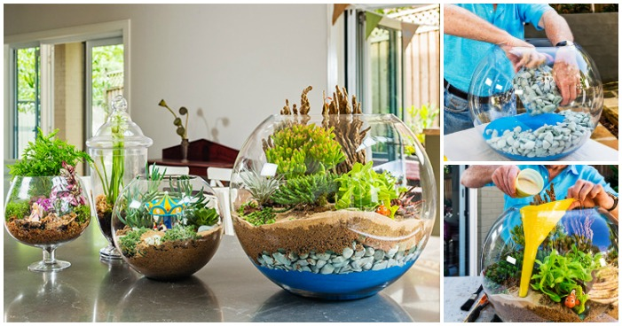 Small food garden - Creative Ideas How To Make A Terrarium Icreativeideas Com