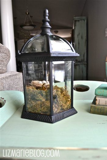 DIY Broken Light Fixture Terrarium