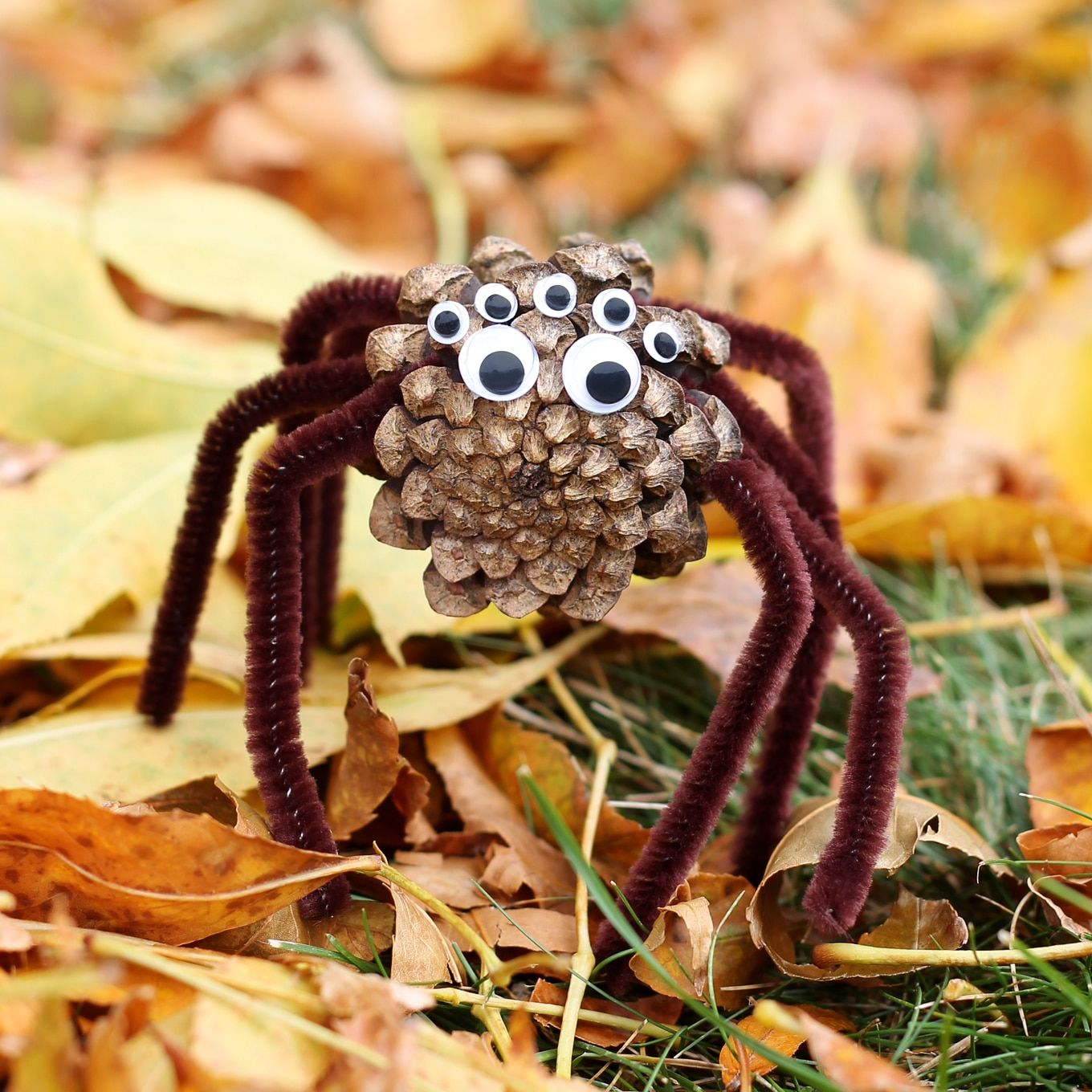 How to Make Pinecone Spiders