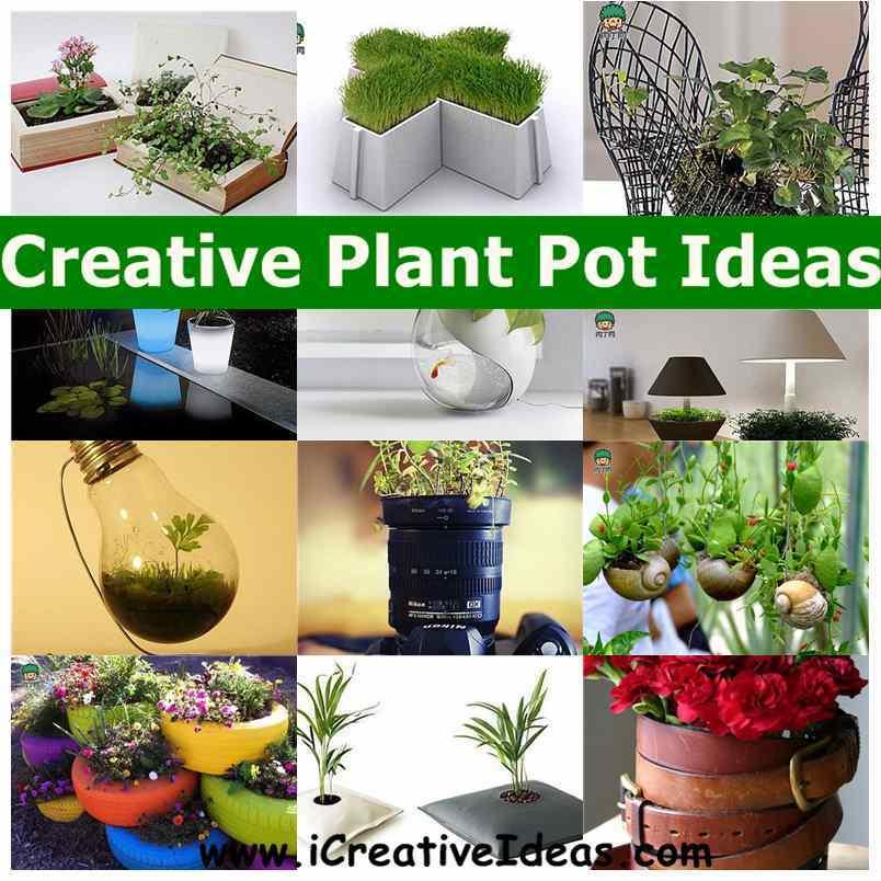 Creative Plant Pot Ideas1 Jpg