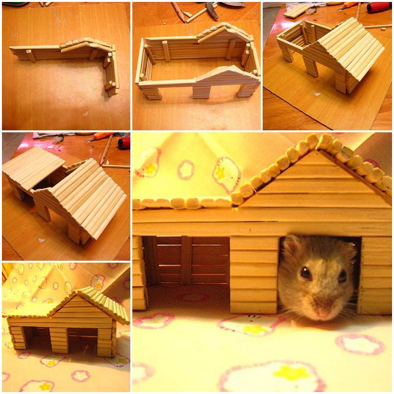 Diy hamster house with chopsticks for How to build a hamster cage