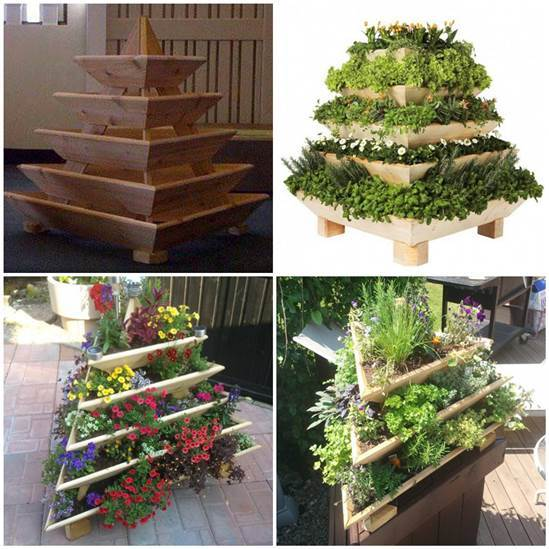 Creative Idea of Home Gardening - Triolife Plant Pyramid