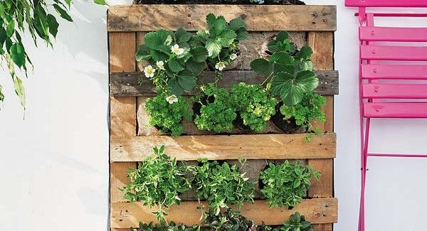 25 Amazing DIY Projects to Repurpose Pallets into Garden Planters --> Pallet Vertical Garden