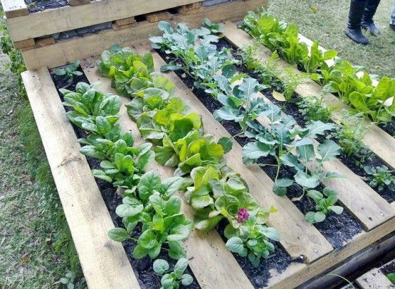 25 Amazing DIY Projects to Repurpose Pallets into Garden Planters --> Wood Pallet Garden Frames