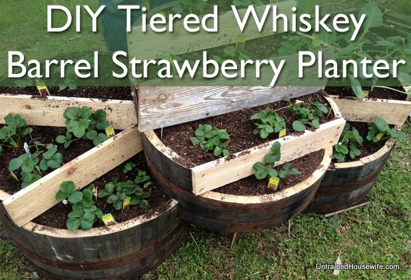 36+ Creative DIY Ideas to Upcycle Old Wine Barrels --> DIY Tiered Wine Barrel Strawberry Planter