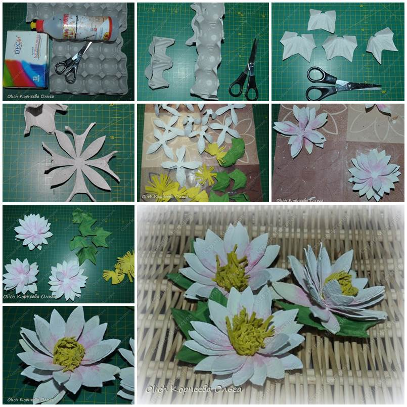 Egg Carton Craft - Delicate Waterlily
