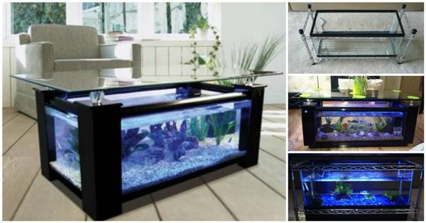 How to DIY Aquarium Coffee Table ttt3 Diy Fish Tank Coffee Table