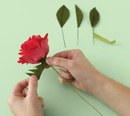 How-to-DIY-Easy-Crepe-Paper-Rose-5.jpg