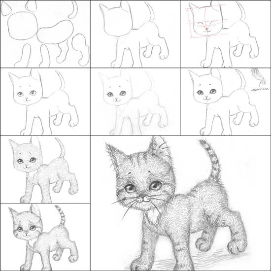 how to draw a kitten easily