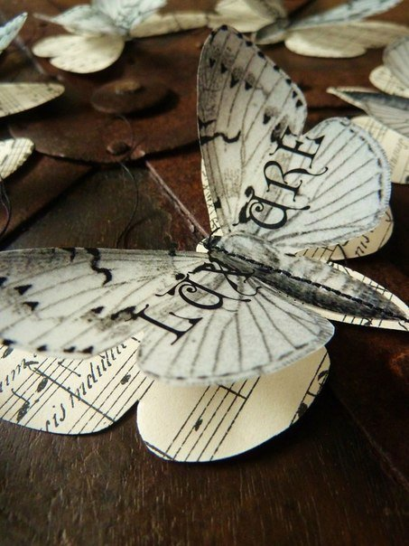 DIY-Beautiful-Butterfly-Decoration-from-Templates-9.jpg