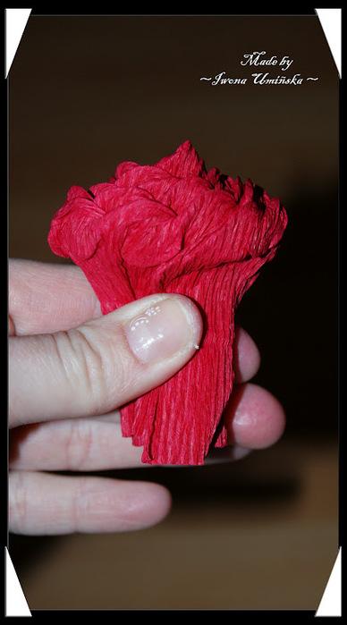 How-to-DIY-Unique-Crepe-Paper-Flower-19.jpg