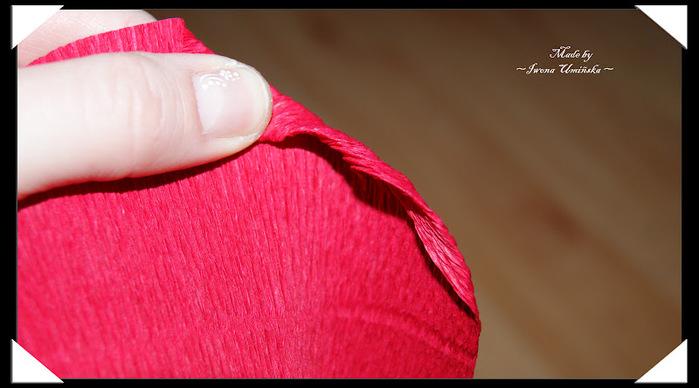 How-to-DIY-Unique-Crepe-Paper-Flower-8.jpg
