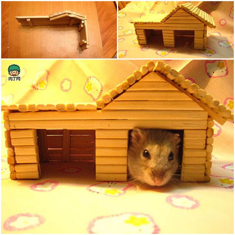 DIY Hamster House with Chopsticks 1