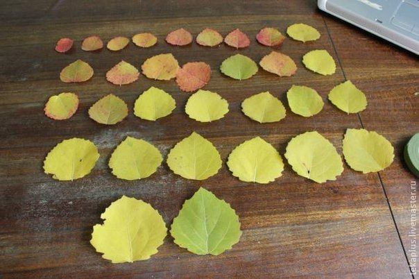 How-to-DIY-Beautiful-Roses-from-Autumn-Leaves-1.jpg