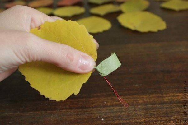 How-to-DIY-Beautiful-Roses-from-Autumn-Leaves-3.jpg