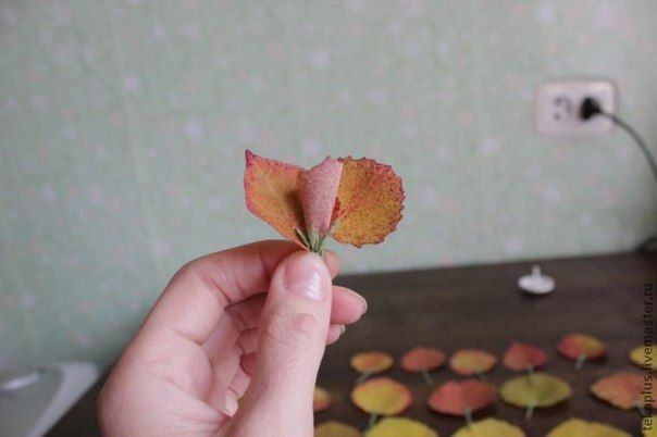 How-to-DIY-Beautiful-Roses-from-Autumn-Leaves-6.jpg