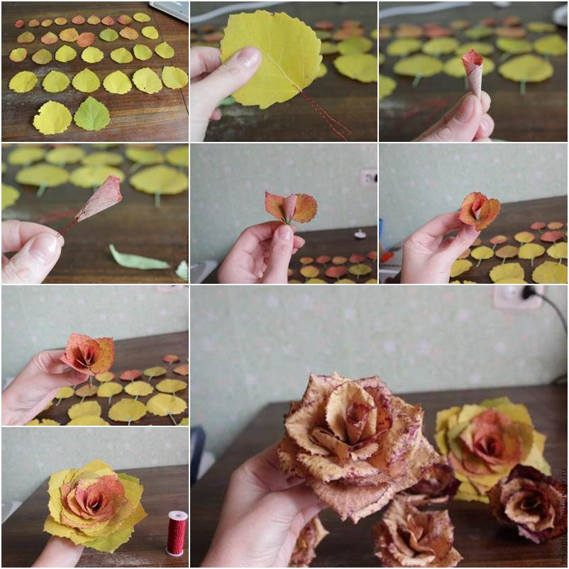 How to DIY Beautiful Roses from Autumn Leaves