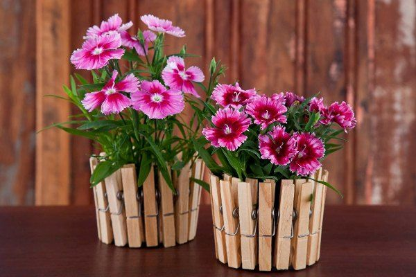How-to-DIY-Nice-Plant-Pot-with-Clothespins-and-Tin-Can-6.jpg