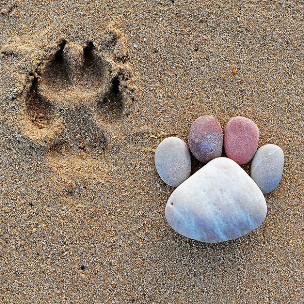 How-to-Make-Creative-Stone-Footprints-DIY-Ideas-7.jpg