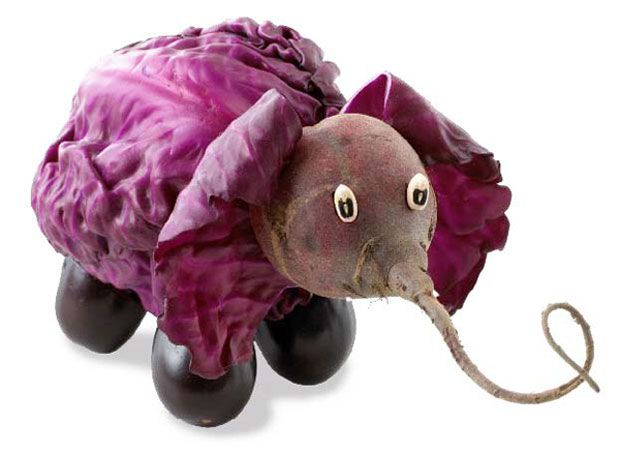 Vegetable Animal
