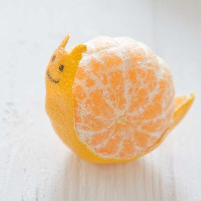 Creative-Animals-Made-of-Fruits-And-Vegetables-27.jpg