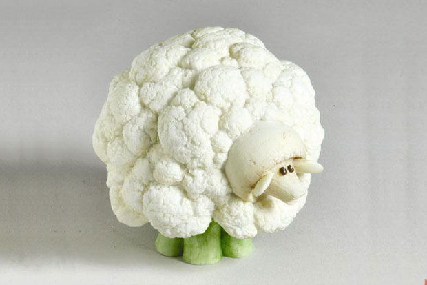 Creative-Animals-Made-of-Fruits-And-Vegetables-3.jpg
