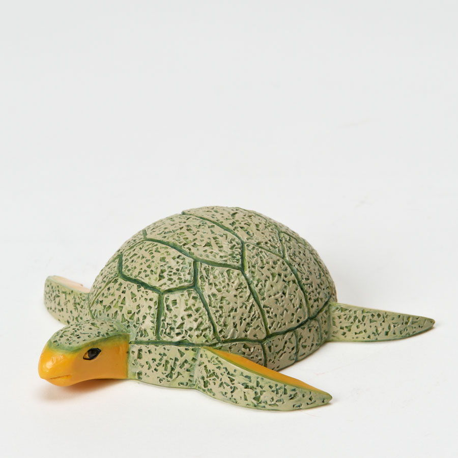 Cantaloupe Sea Turtle