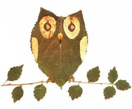Creative Leaf Animal Art - Leaf Owl