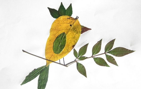 Creative Leaf Animal Art - Leaf Bird