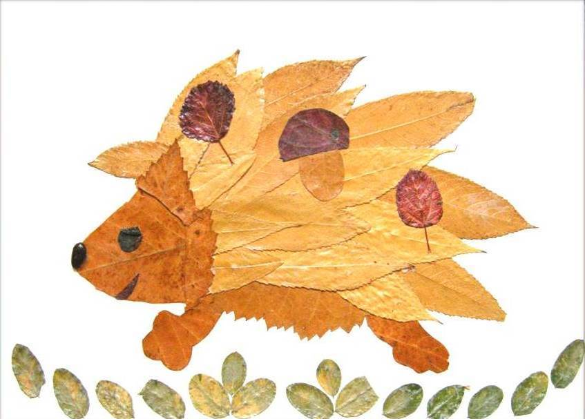 Creative Leaf Animal Art - Leaf Hedgehog