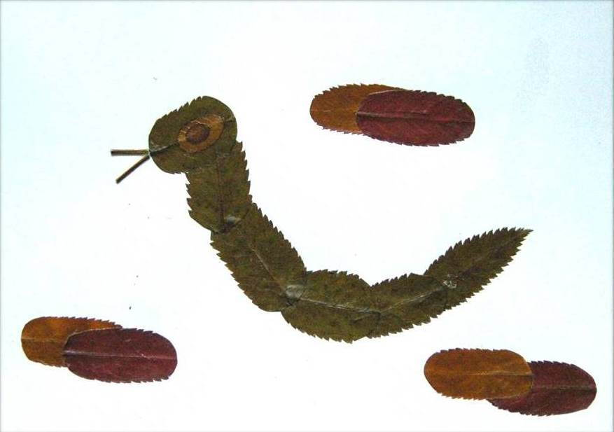 Creative Leaf Animal Art - Leaf Caterpillar