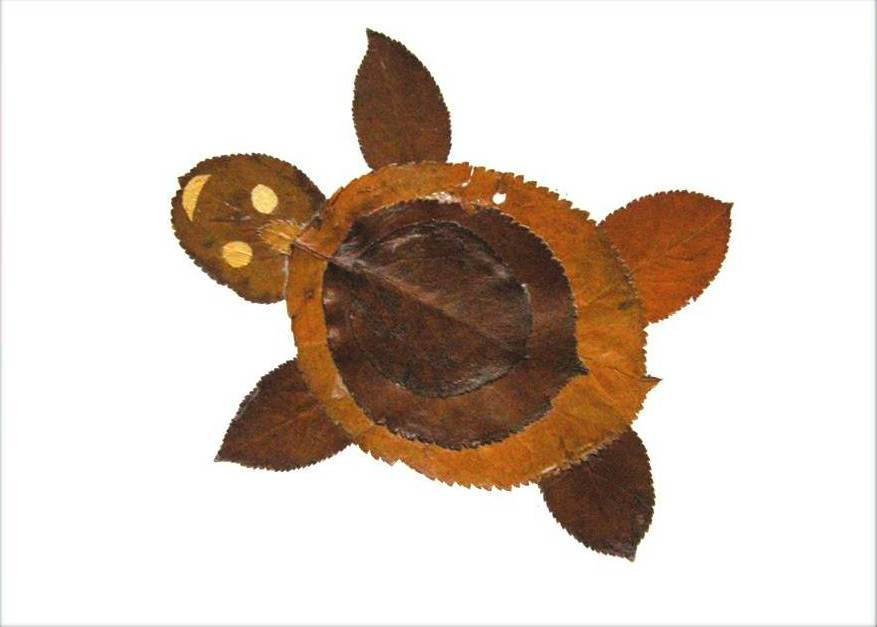 Creative Leaf Animal Art - Leaf Turtle