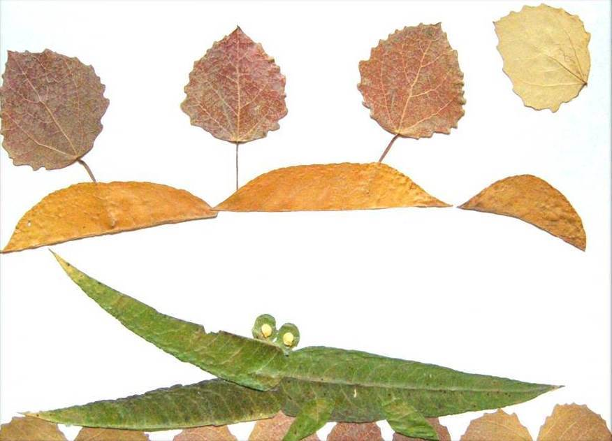 Creative Leaf Animal Art - Leaf Crocodile