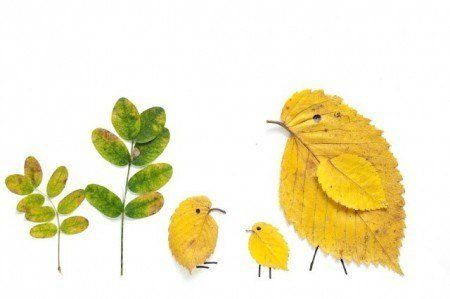 Leaf Chickens