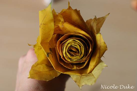 Creative Ideas – DIY Beautiful Maple Leaf Rose 7