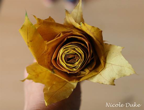Creative Ideas – DIY Beautiful Maple Leaf Rose 8