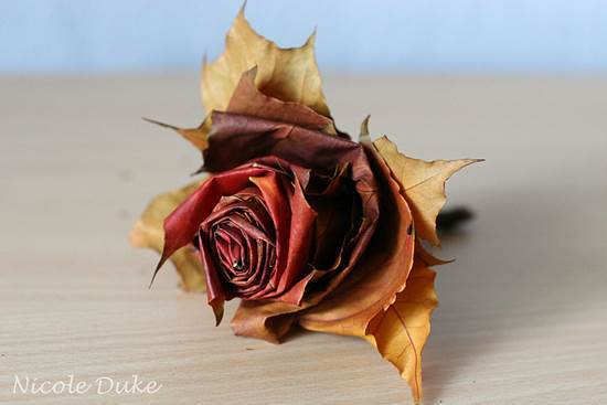 Creative Ideas – DIY Beautiful Maple Leaf Rose 9