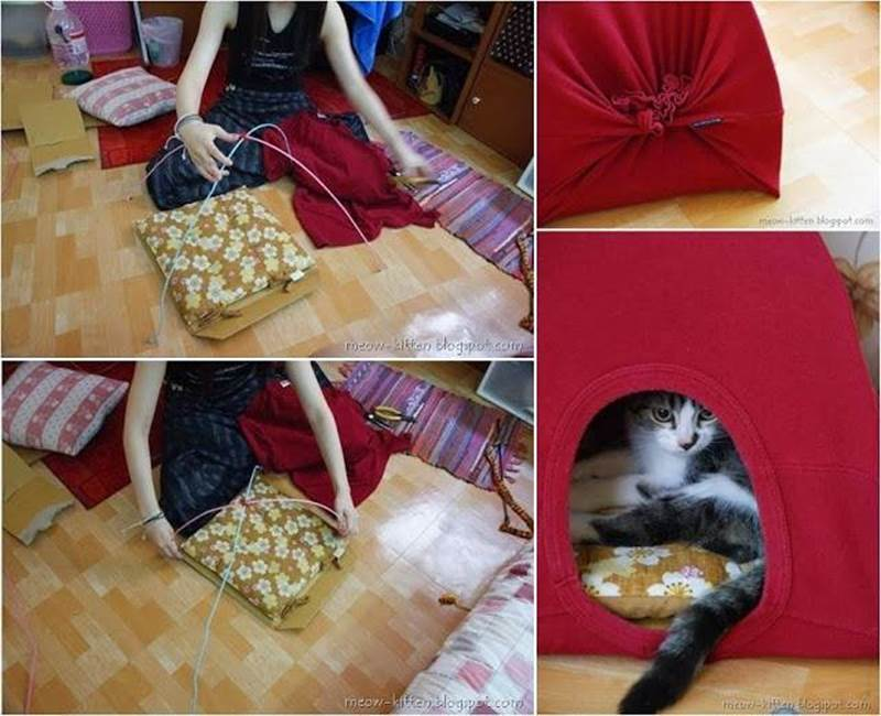 Creative Ideas - DIY Easy Cat Tent from Old T-shirts